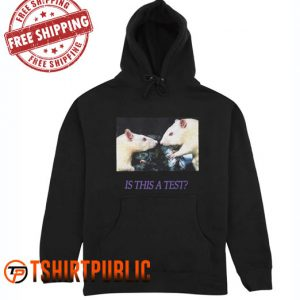 Drop dead is this a test Hoodie